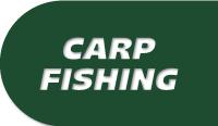 TIENDA CARP FISHING